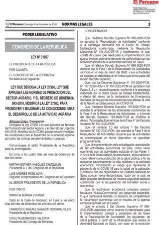 Decreto Supremo 187-2020-PCM