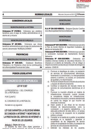 Ley N°31207